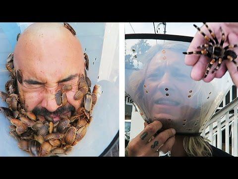Tarantula Face Mask!! (COCKROACH IN THE EAR BONUS) w/ Brian Barczyk!