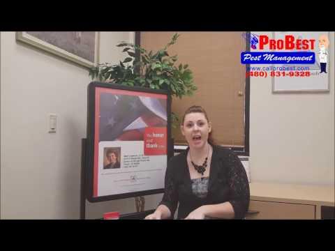 Scorpion Control Reviews / Testimonials in Gilbert, AZ ( Exterminators )