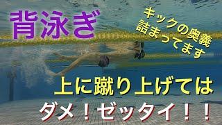 【 背泳ぎ 】【 水泳 】【 競泳 】 キック 蹴り上げてはダメ 浮き続ける為に必要な事