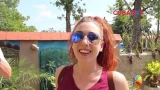 Dificultades en el abastecimiento al turismo en Viñales, Cuba