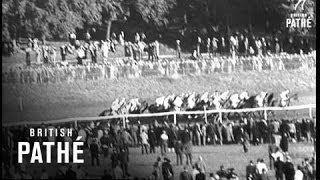 Italian Horse Wins L'arc De Triomphe (1955)