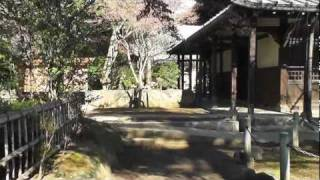 東京世田谷にある豪徳寺は 彦根藩主、井伊家の菩提寺である。 国指定 井...