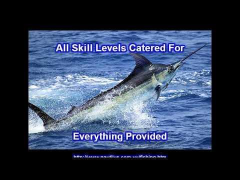 Wild Blue Fishing Charters Vanuatu PH:+678 22398
