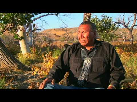 Chief Arvol Looking Horse Speaks of White Buffalo Prophecy