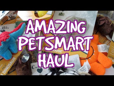 AMAZING PetSmart Haul 2017 Coupon Clearance Cat Toys Raw Cat Food