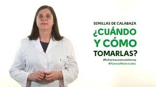 Semillas de calabaza, cuándo y cómo tomarlas #TuFarmacéuticoInforma
