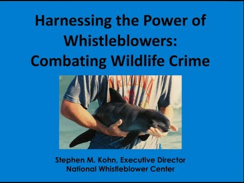Using US Whistleblower Laws to Fight Illegal Fishing and Marine Pollution and Fund MPAs