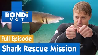 🦈 Dr Chris Brown's Shark Rescue Mission | FULL EPISODE | S07E15 | Bondi Vet