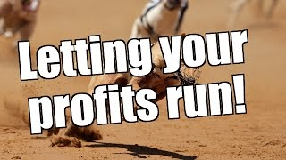 Trading on Betfair & Bet Angel - Letting your profits run
