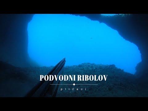 Podvodni ribolov: plićaci