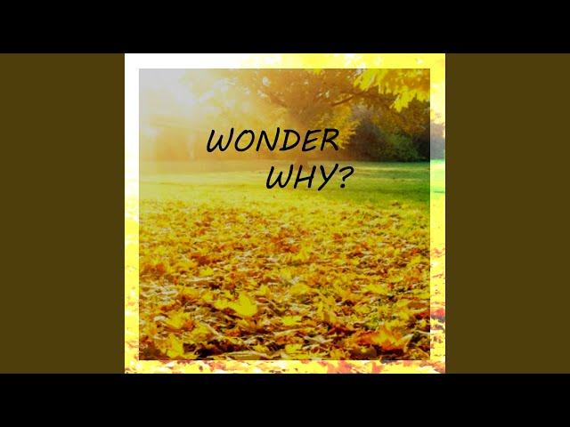 Wonder Why (feat. CJ Teffner)