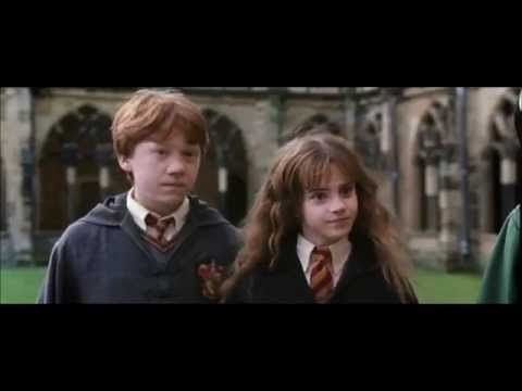 Ron and hermione moments chamber of secrets youtube - Hermione granger best moments ...