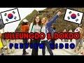 PREVIEW: Ulleungdo & Dokdo trip with S.M.O.E teachers!!! 🇰🇷