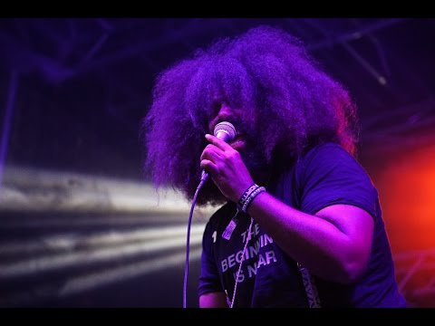 Reggie Watts Live at Great North 2015