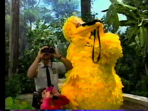 Sesame Street - Episode 2946 Street Scenes | FunnyDog TV