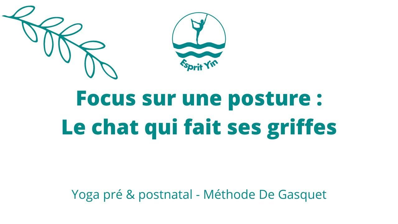 [Vidéo] Méthode De Gasquet : le chat qui fait ses griffes