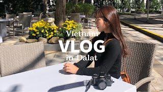 [VLOG] 베트남 달랏 여행 / 삼뚜옌람&팰리…
