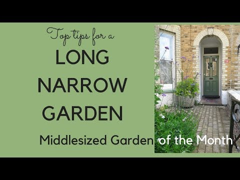 A long narrow garden - top tips in February's Middlesized Garden of the Month