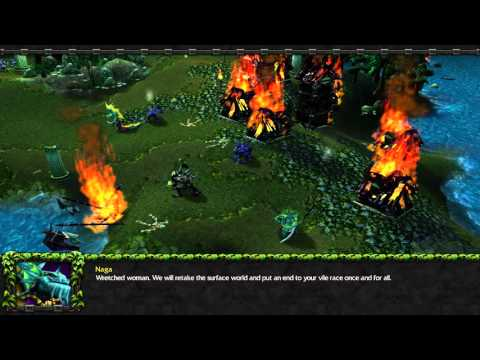 Warcraft III: The Frozen Throne - Sentinels campaign