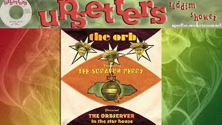 POLICE AND THIEVES ⬥The Orb featuring Lee Perry⬥
