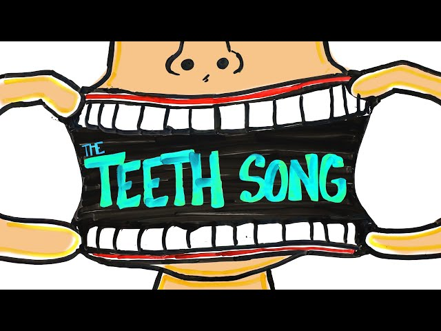 The Teeth Song (Memorize Every Tooth)