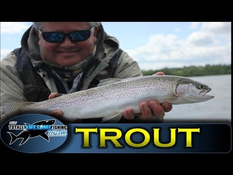 Fly fishing for Trout from a boat | TAFishing Show