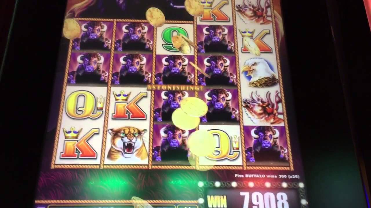 buffalo stampede slot machine - 3