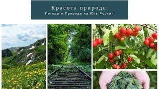 Погода и Природа Юга России