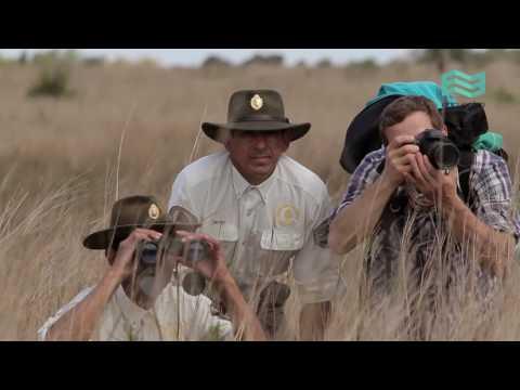 Equilibrios. Parques Nacionales: Parque Nacional Mburucuyá (capítulo completo) - Canal Encuentro HD