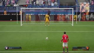 Fifa met koet