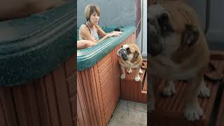 Someone wants to go in the hot tub