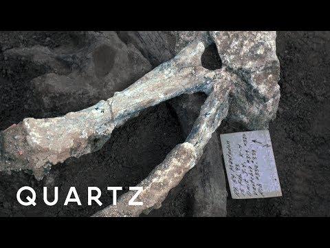 Mastodon bones point to ancient humans in San Diego