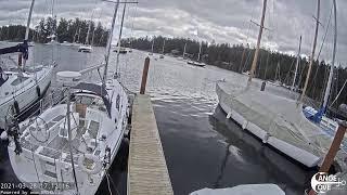 Preview of stream Canoe Cove Marina Live Webcam