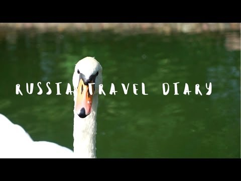 Russia Travel Diary - Moscow & Countryside