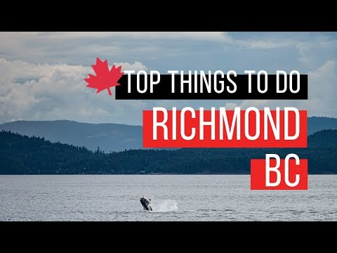 Top Things To Do In Richmond BC | 5 Bucket List Must Do's - Dumpling Trail, Whale Watching & More!