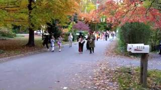 Arden Village Halloween Parade, clip two