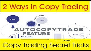 Copy trading 2 ways | Percentage and Per lot commission tutorial in Hindi and Urdu