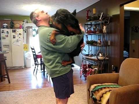 Resultado de imagen para doberman being hugged