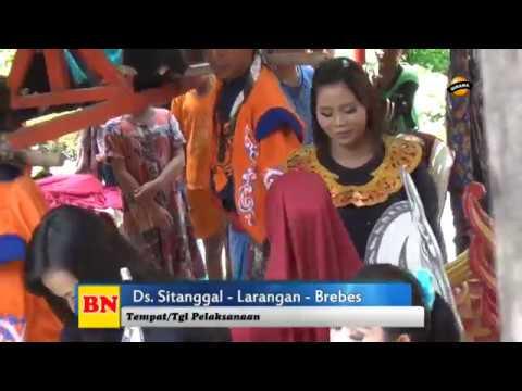 MELEKAN WADON (Panggulan) - SENI BUROK DANGDUT BUNGA NADA TERBARU 2019 Live Sitanggal Brebes