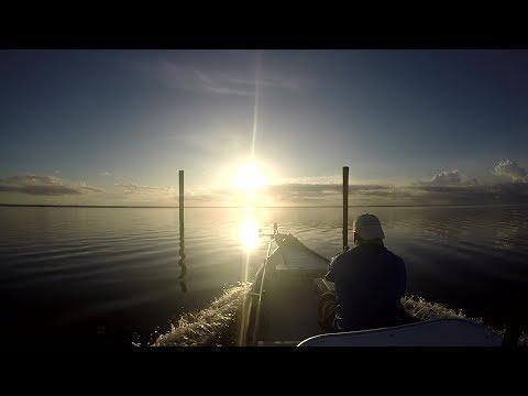Scottsmoor And South Lagoon Fishing Report