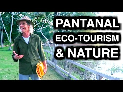 NATURE AND ECO-TOURISM IN PANTANAL - TRAVEL VLOG 290 BRAZIL | ENTERPRISEME TV