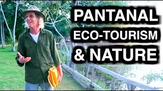 NATURE AND ECO-TOURISM IN PANTANAL - TRAVEL VLOG 290 BRAZIL | …