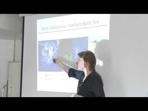 Ecology and Diversity of the Baltic Sea