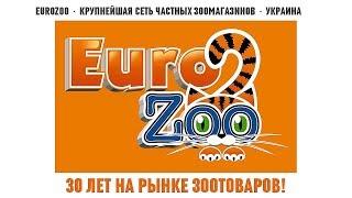 видео Интернет магазин зоотоваров