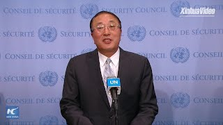 Chinese envoy vows to push for UN Security Council action to defuse Israeli-Palestinian tension