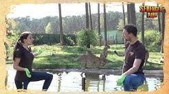Kommt mit auf Safari! Mit Stephan und Steffi im Serengeti-Park Teil 3
