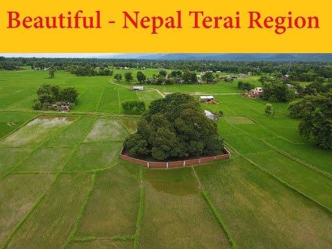 अति सुन्दर हरियलि तराइ भेग /Drone Reveals Amazing Nepal - Terai Region