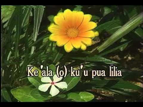 Hawaiian Karaoke - Pua Lilia