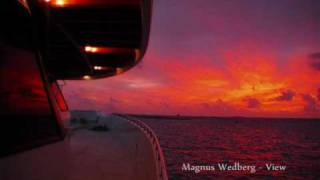 Magnus Wedberg - View