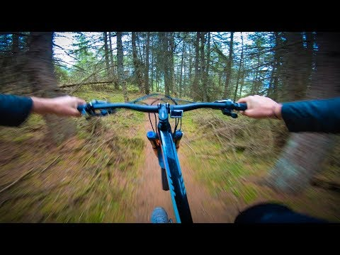 One Of My Favourite Trail in the World? #1 Dunkeld
